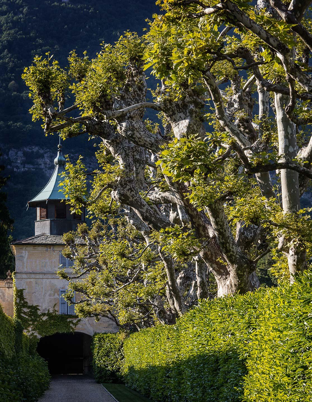 Villa Balbiano luxury property Lake Como Milan best service garden park wedding event venue available for rent rental Italy