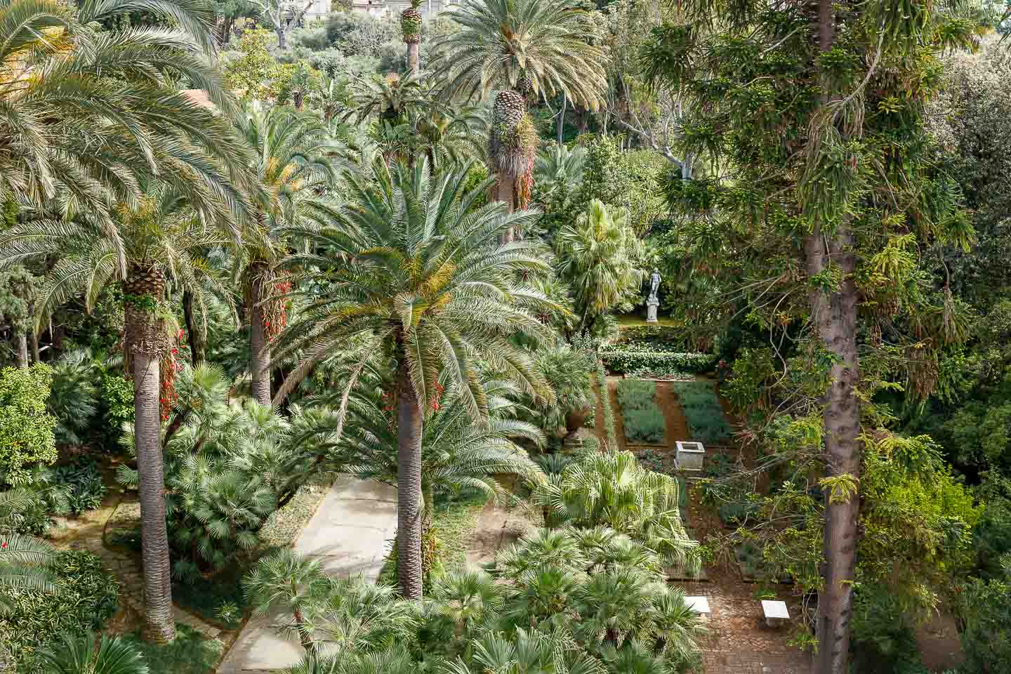 Villa Astor Amalfi coast Sorrento house exclusive rental expansive sumptouous landscape botanical garden thousand plant species trees exotic flowers 35